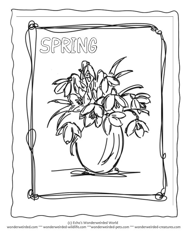 Colouring Pages Of Flowers In Vase : 47 best daffodils images on pinterest