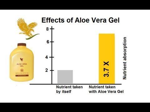Aloe Vera Juice Benefits. Aloe Vera helps increase better nutritent abso...