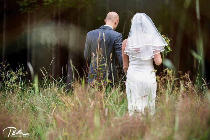 wedding+forest