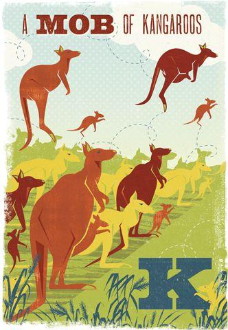 a Mob of Kangaroos by Woop Studios