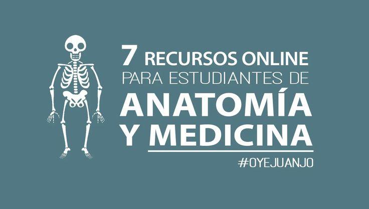 Si eres estudiante de Medicina y Anatomía , entonces no puedes perderte esta recopilación de 7 páginas educativas para seguir aprendiendo. ...