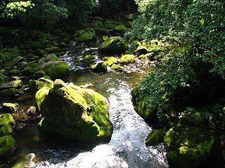 Irreler Wasserfälle – Wikipedia