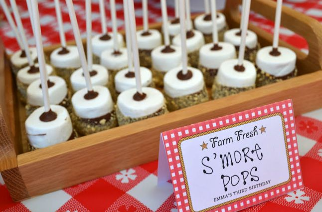 Country western party food - s'more pops,,, thinkin about mothers day party for all mommy