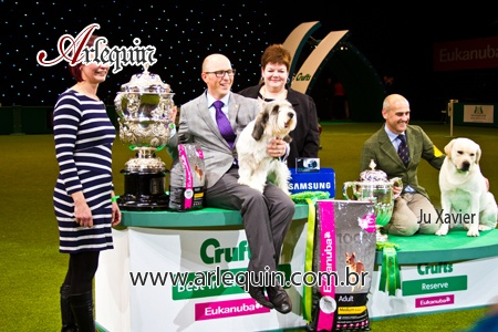 Have a look at the best photos of the Crufts 2013.  http://worldog.com/crufts-2013-photos