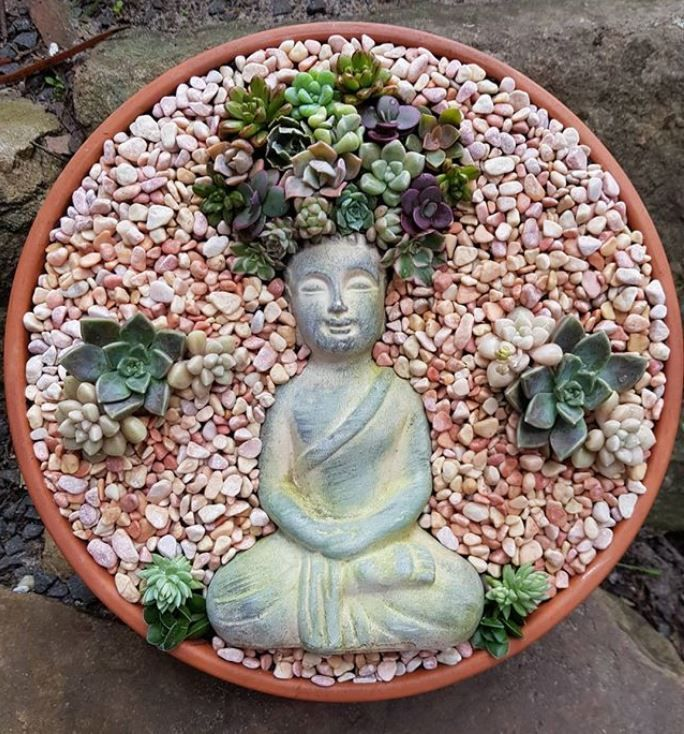 Composition Zen Avec Boudha De Succulentes Et Plantes Grasses