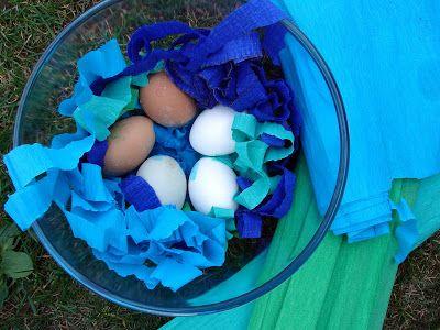 Magráta: Krepáková vajíčka