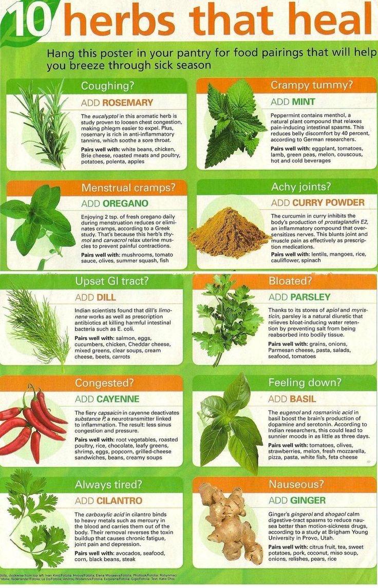 10 Herbs that Heal -Posted on Survival January 27, 2014