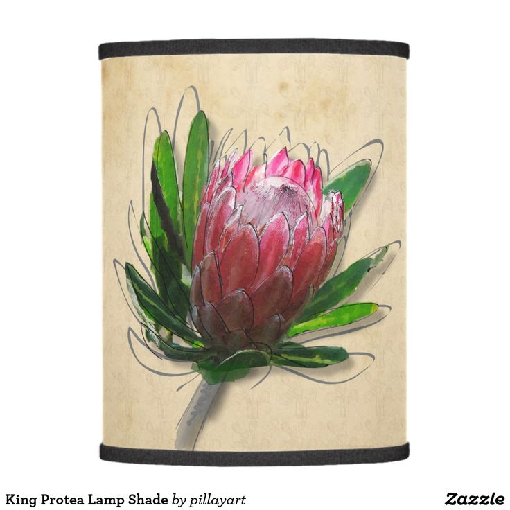 King Protea Lamp Shade  #protea  #shopping  #lampshades  #zazzle