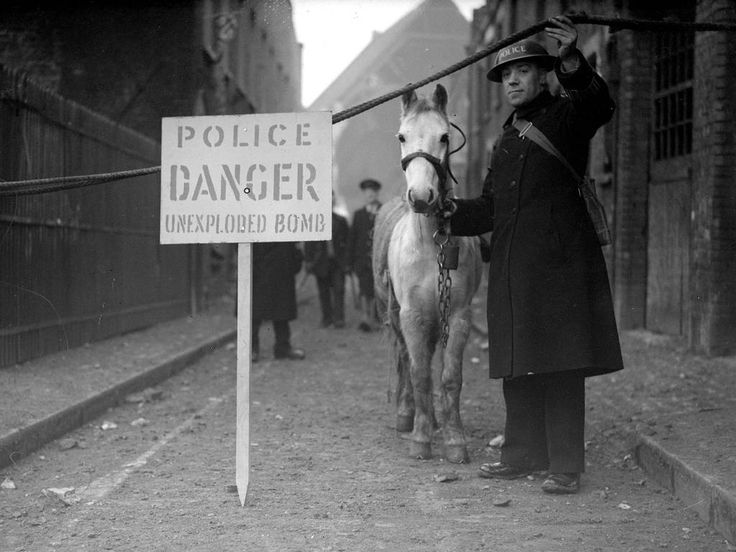 1941: A policeman coaxing his pony to leave an area which is being evacuated due to the discovery of an unexploded bomb. Keystone/Getty Images