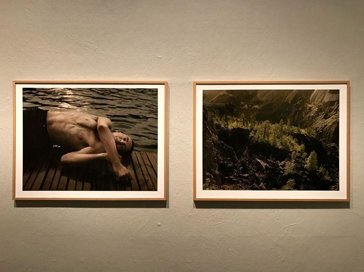 Elis Hoffman: Fading  Valokuvataiteen museo, Helsinki 2017