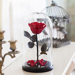 Роза в стеклянной колбе в подарок.