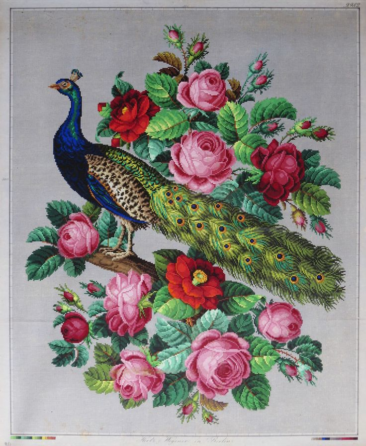 ANTIQUE LARGE HAND PAINTED BERLIN WOOLWORK EMBROIDERY PATTERN - PEACOCK & ROSES
