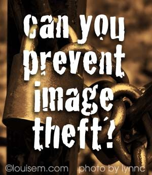 Can You Protect Images from Copyright Infringement? Best tips: http://louisem.com/1854/can-you-protect-images-from-copyright-infringement: Protection Image,  Dust Jackets, Copyright Infring, Image Theft, Graphics Design, Blog Example, Shops Photography, Prevent Image, Photo Guide