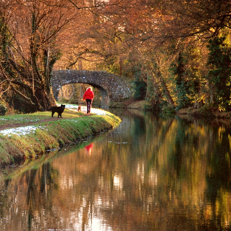 Monmouth/Brecon Canal, South Wales UK - Chris Whittington