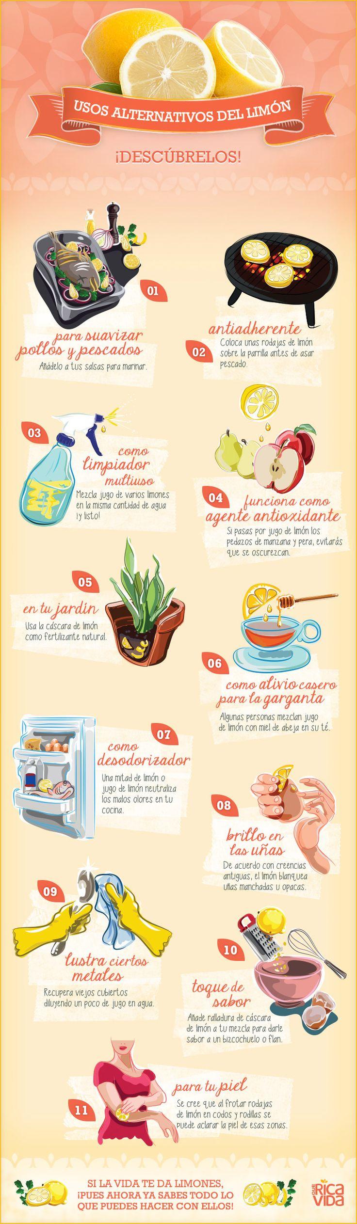 Si la Vida Te Da #Limones, Haz Mucho Más Que Limonada #Infographia