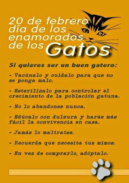 http://perrygatos.blogspot.com.es/2015/02/dia-internacional-del-gato.html