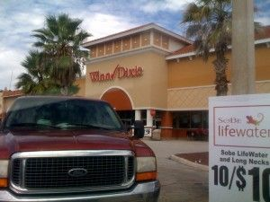 Winn Dixie, hess, and publix store locations near disney (w car)