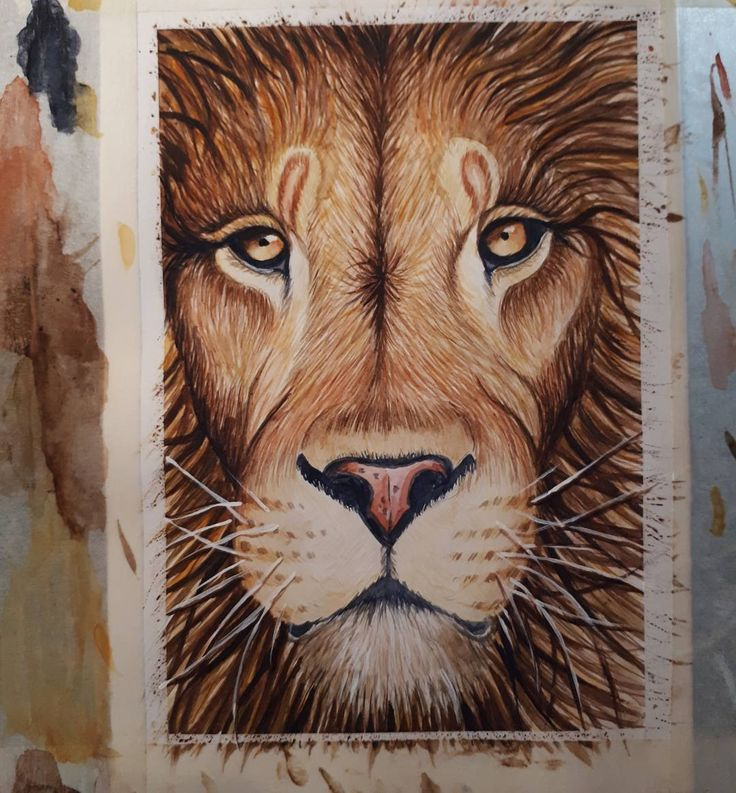 lion painting #watercolours #watercolorpainting #painting #lion #art