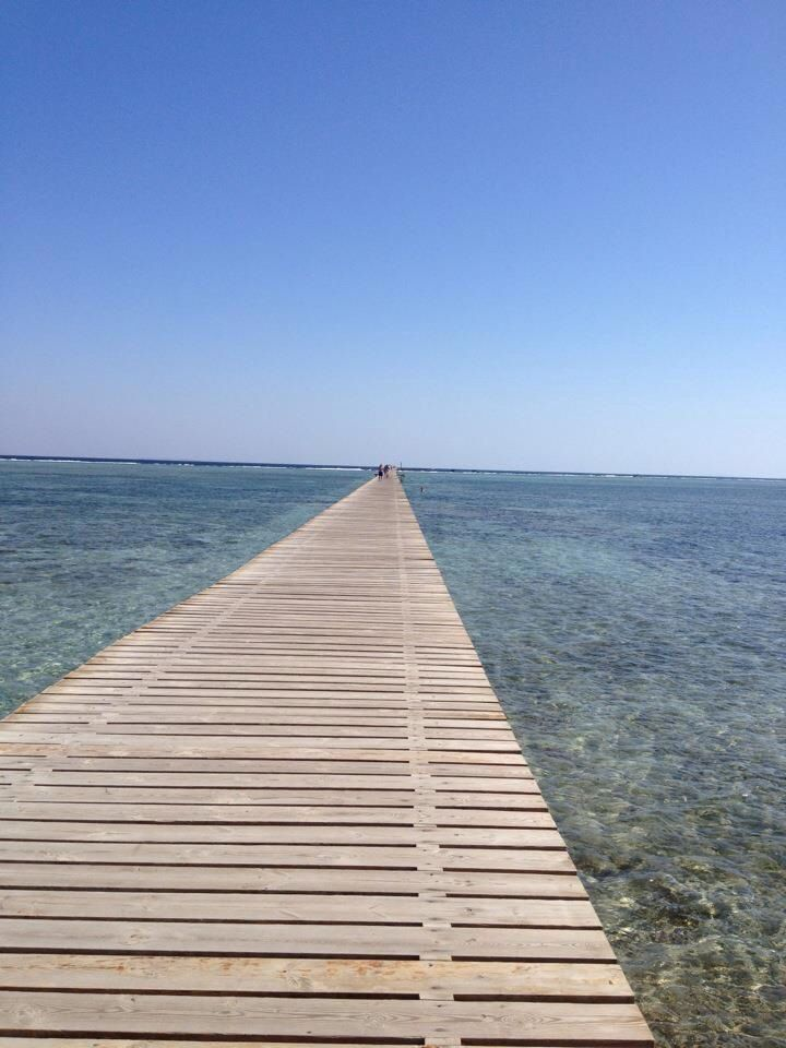 To the coral reef