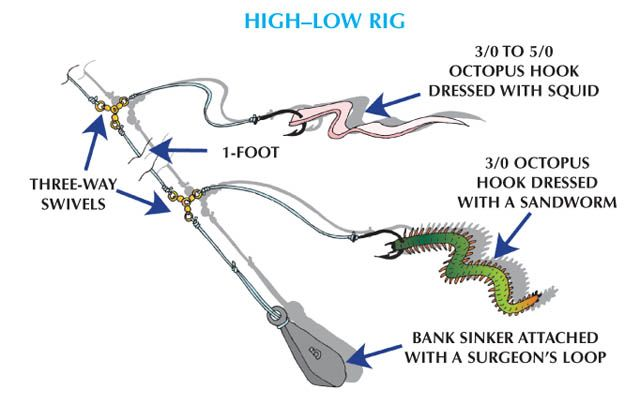 Weakfish high low rig fish time pinterest rigs for Crappie fishing rigs