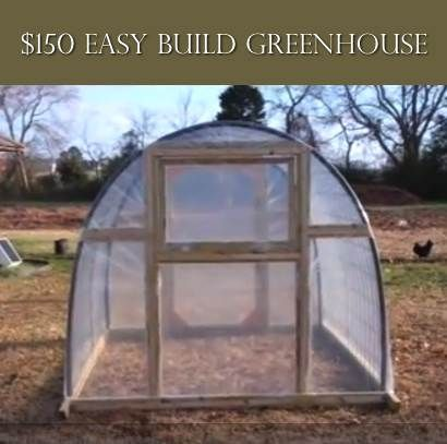 Easy Build Green House For $150...http://homestead-and-survival.com/easy-build-green-house-for-150/