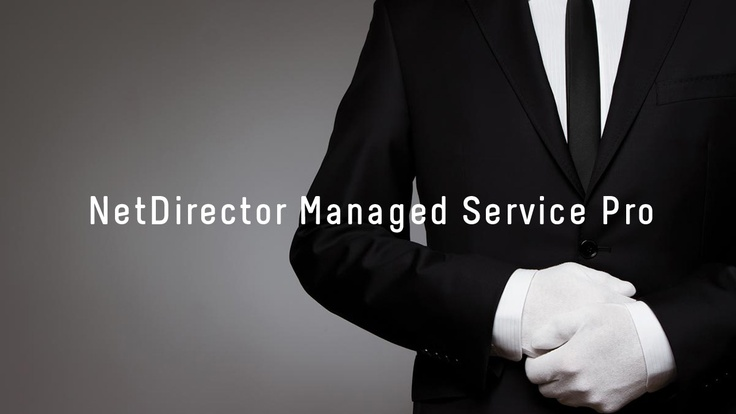 NetDirector Managed Service Pro