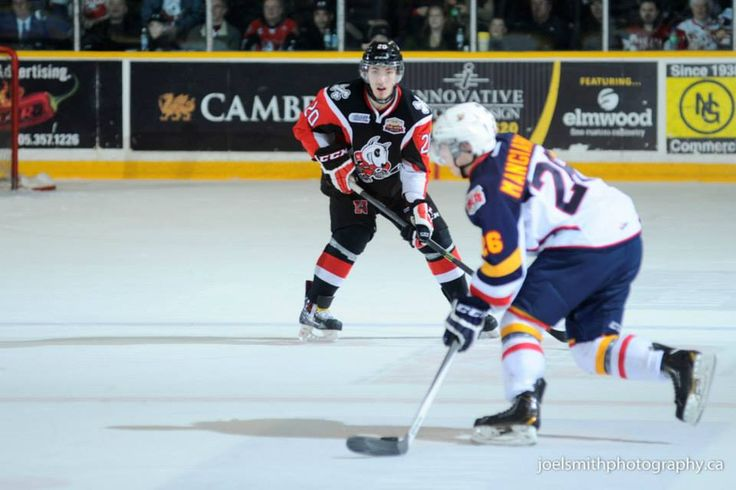 Sports Star Spotlight: Zach Wilkie, Defenseman Niagara Ice Dogs Zach Wilkie may only be 17 years old, but this six foot, two hundred pound defenceman is working hard during his off season in prepar...
