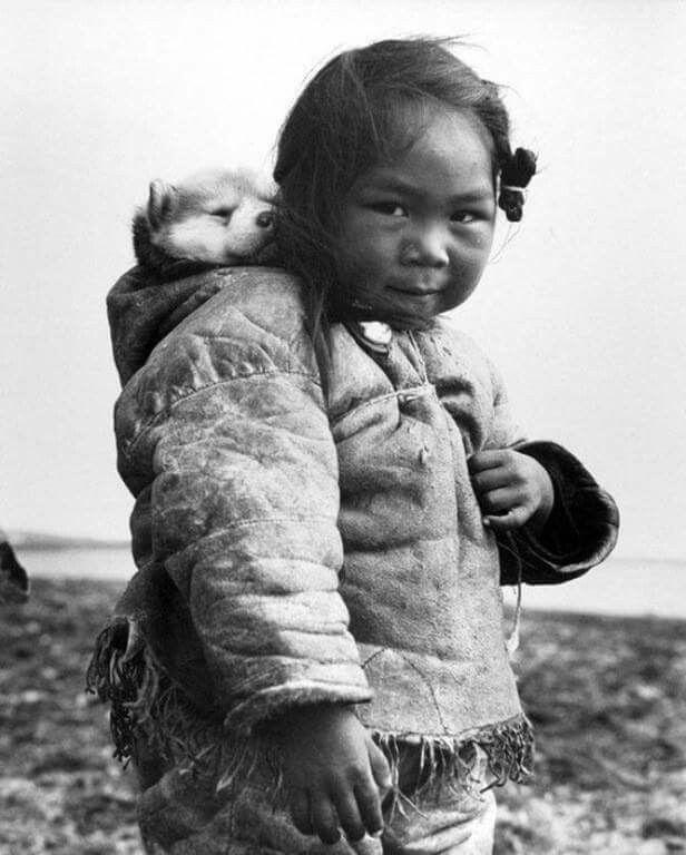 Young Inuit girl with her puppy, 1949. Photograph by Richard Harrington.