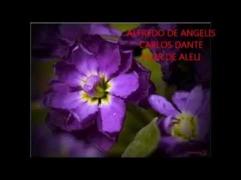 ALFREDO DE ANGELIS -  CARLOS DANTE -  ALELI  ( FLOR DE ALELI ) -    TANGO