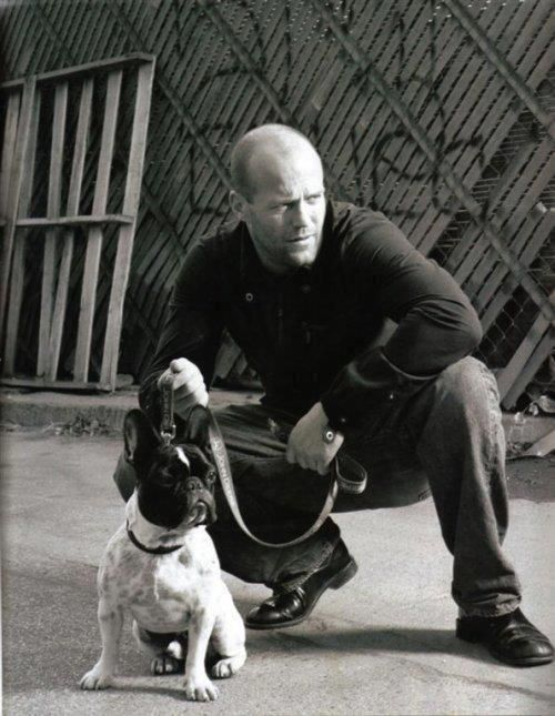 Frenchies and Jason Statham ;-)