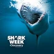 Shark Week; this is week!