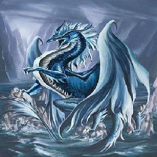 Animal Photo Wallpaper Blauer Drache Drachen Dragons Pinterest Blauer