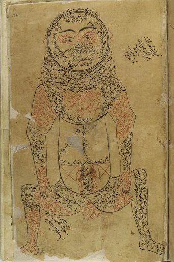 L0013313 Muscular system, Avicenna (https://pinterest.com/pin/287386019942020195), Canon of Medicine.