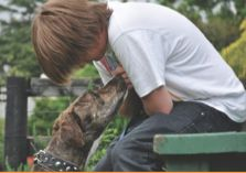 The programme gives youth an opportunity to participate in positive, rewarding experiences where respect for themselves, other people and animals is reinforced. At the end of the course the dog is  put up for adoption.
