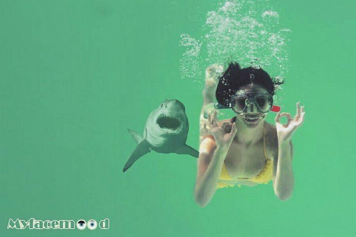 #Kitesurf: un #drone cattura delle immagini terrificanti!  Una cosa è sperare di intravedere uno #squalo mentre siamo in #vacanza, un'altra è essere pedinati da uno di questi #bestioni!  Leggi tutto qui ☠☠☠