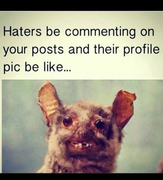 Haters be like.... #WordsOfTruth #LaughOften #LOL #Well #ThatIsAll