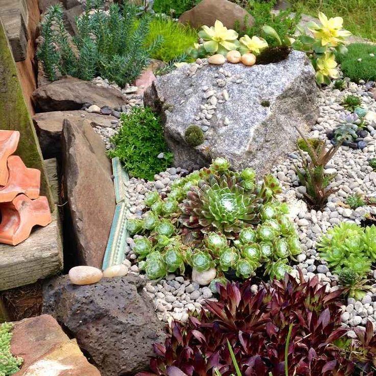 rocaille superbe avec plantes succulentes décorée de tuiles, roches et gravier décoratif