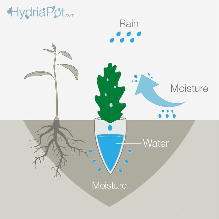 Hydria Pot working infographics