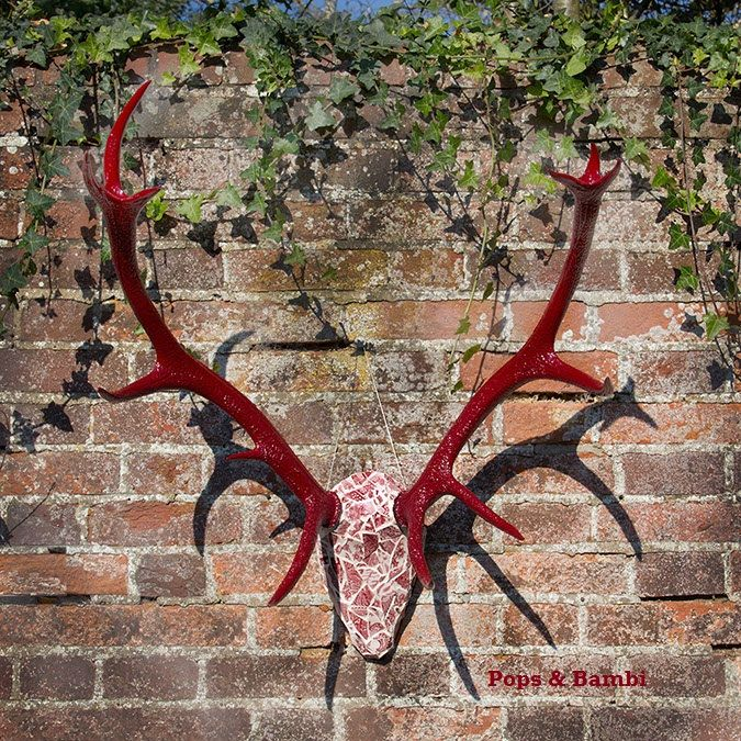 Pops & Bambi ~ Antler & Horn Art Works by Artist Poppy Cyster