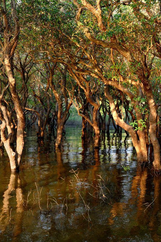 Tonle Sap Lake, Kambodia