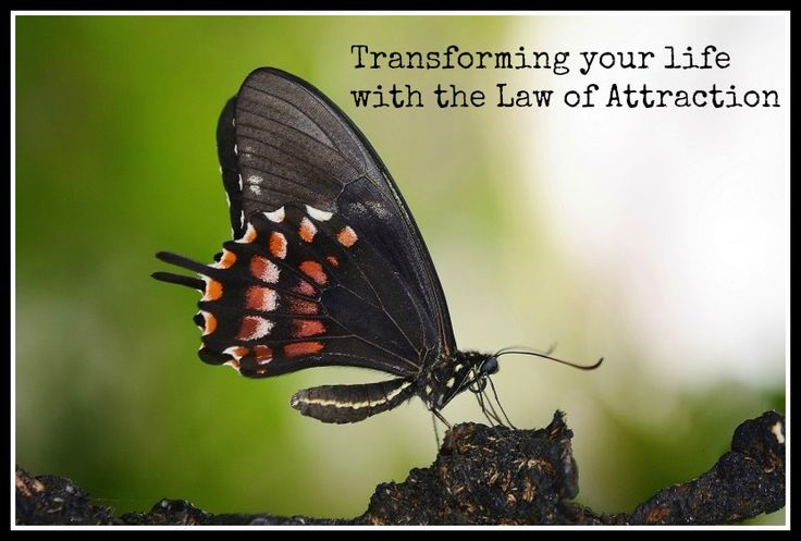 How the Law of Attraction helped transform my life for the better.