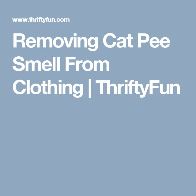 Removing Cat Pee Smell From Clothing | ThriftyFun