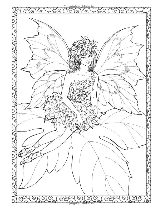 icolor fairies adult coloringcoloring booksmythical