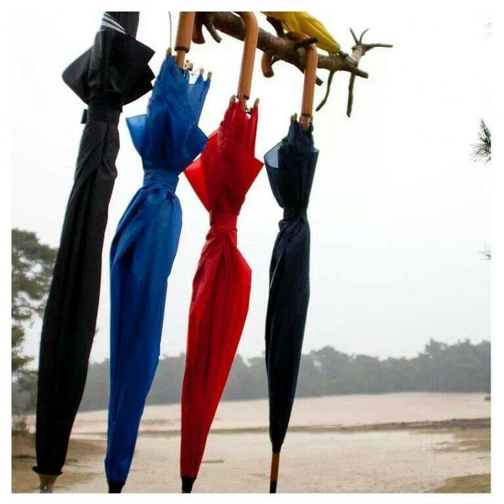 Paraplu aan een tak