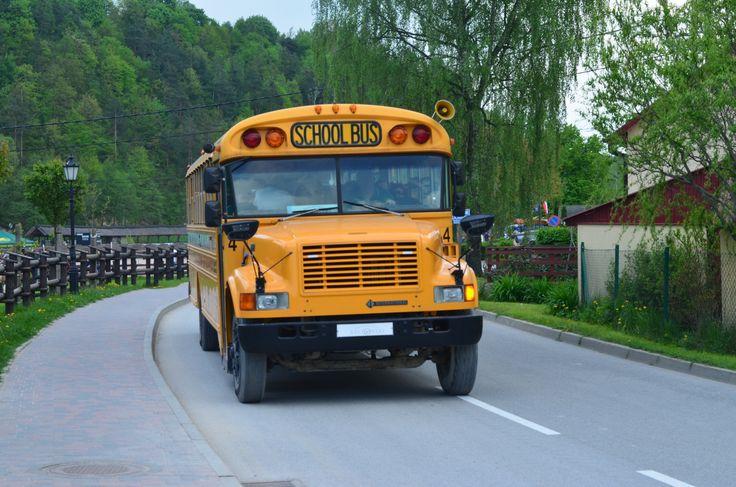 Wycieczka do Zwierzyńca Bałtowskiego żółtym schoolbusem to punkt obowiązkowy wycieczki w Bałtowie.