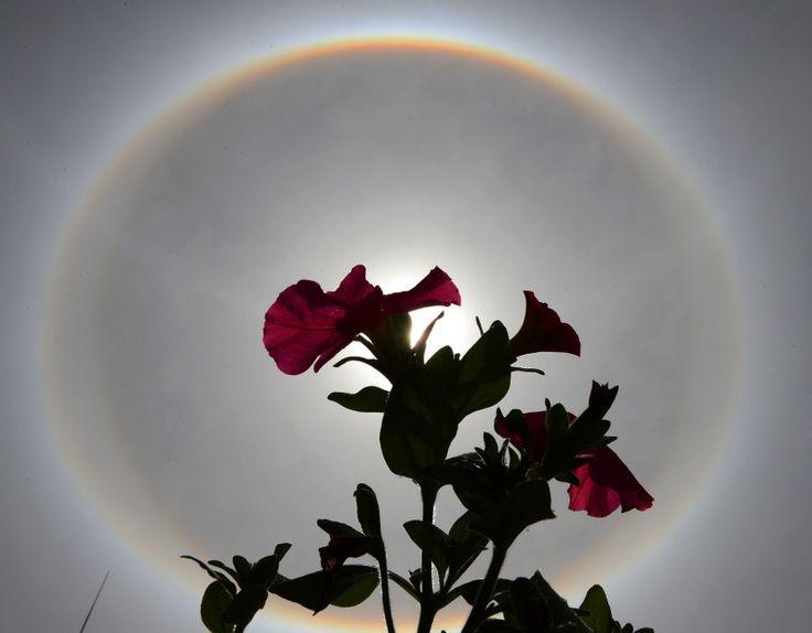 Le immagini dell'eclissi solare che ha svegliato questa mattina Lhasa, la capitale del Tibet