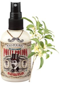 Best spray for bathroom odors - 17 Best Images About Coverup On Pinterest Toilets Gag