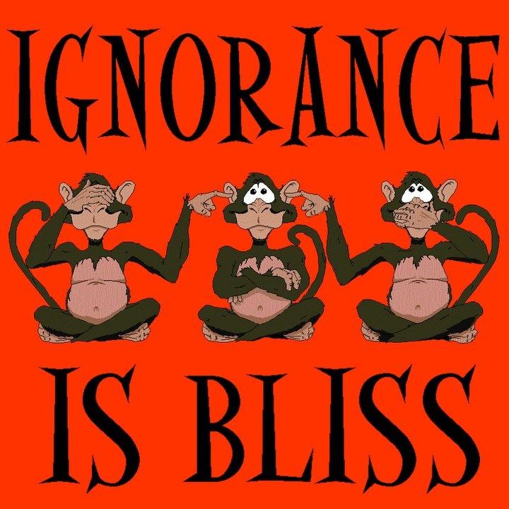 The Wickedness of Ignorance Essay