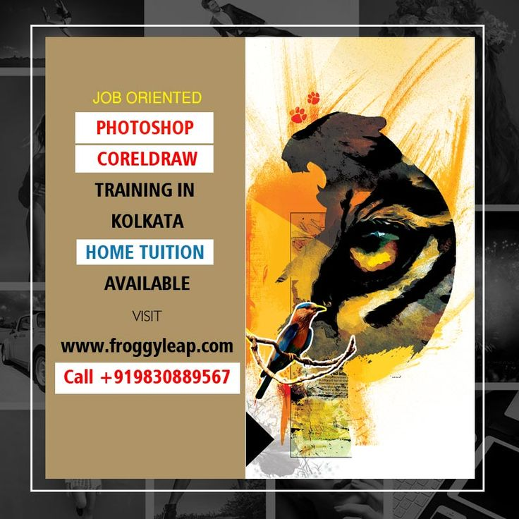FrogyLeap Provides Photoshop U0026 CorelDraw Trainings To Students Interested  In Pursue Career In Graphic Designing.