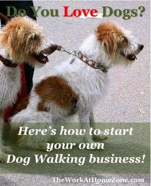 What is the best way to write a flyer concerning dog walking?
